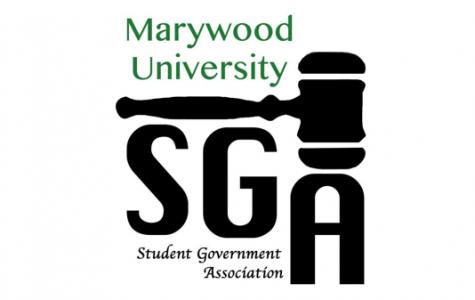 NEWS BRIEF: SGA 2017-2018 representatives elected
