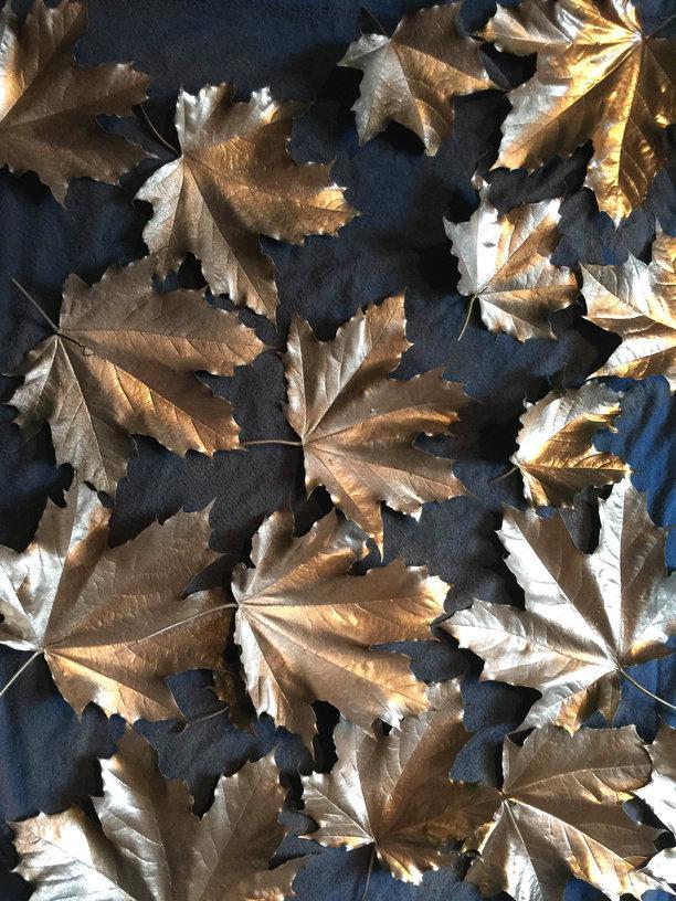 rsz_brown_leaves_web