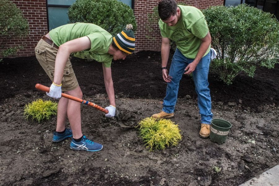 John Shebby, a freshman biotechnology major, and Joe Hunt, a senior business and finance major, plant a shrub in front of the Center for Wellness and Athletics.