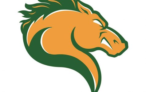 Marywood Athletics reveals new look with brand new logo, athletic identity