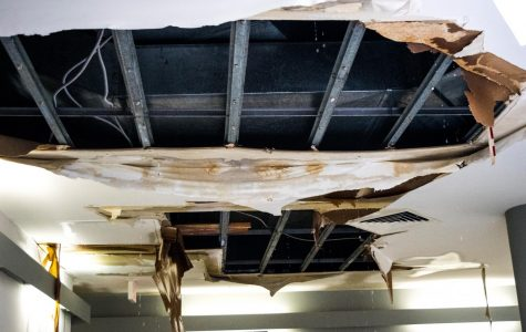 Ceiling collapses in the Suraci Gallery