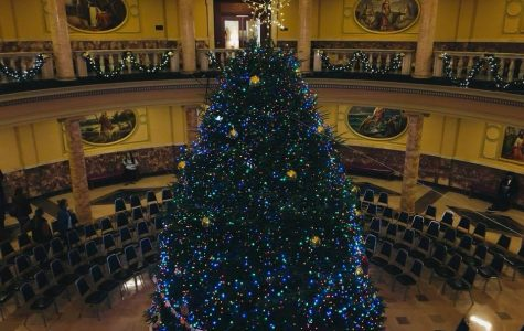 From farm to Rotunda: Annual Christmas tree ceremony comes to light again