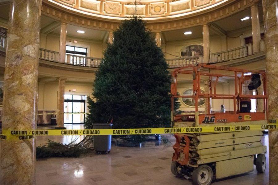 The tree awaits decoration.