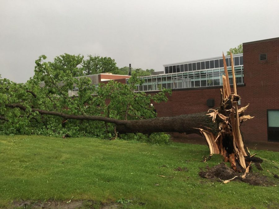 NEWS BRIEF: Clean up begins on campus after storm